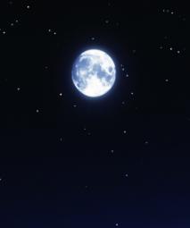 月亮传奇dj