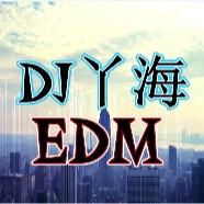 DJ丫海的头像